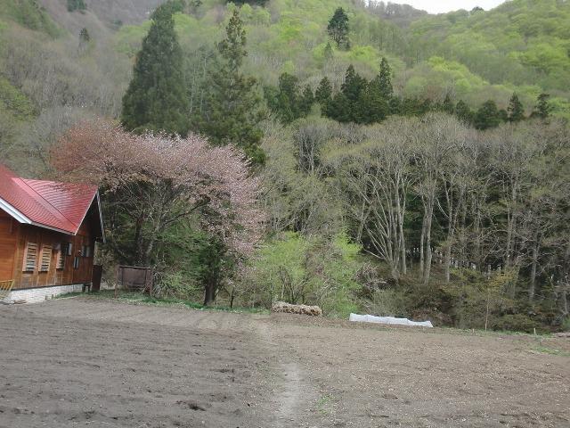 福島県檜枝岐村