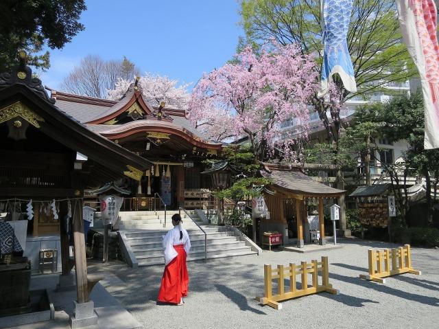 子安神社の巫女(八王子市明神町)