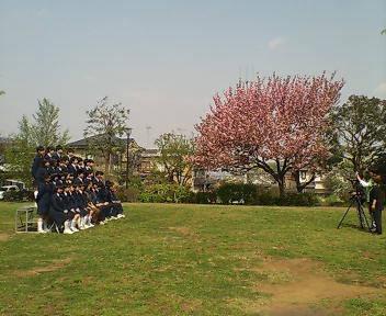 入学式 - まぶしい中学生