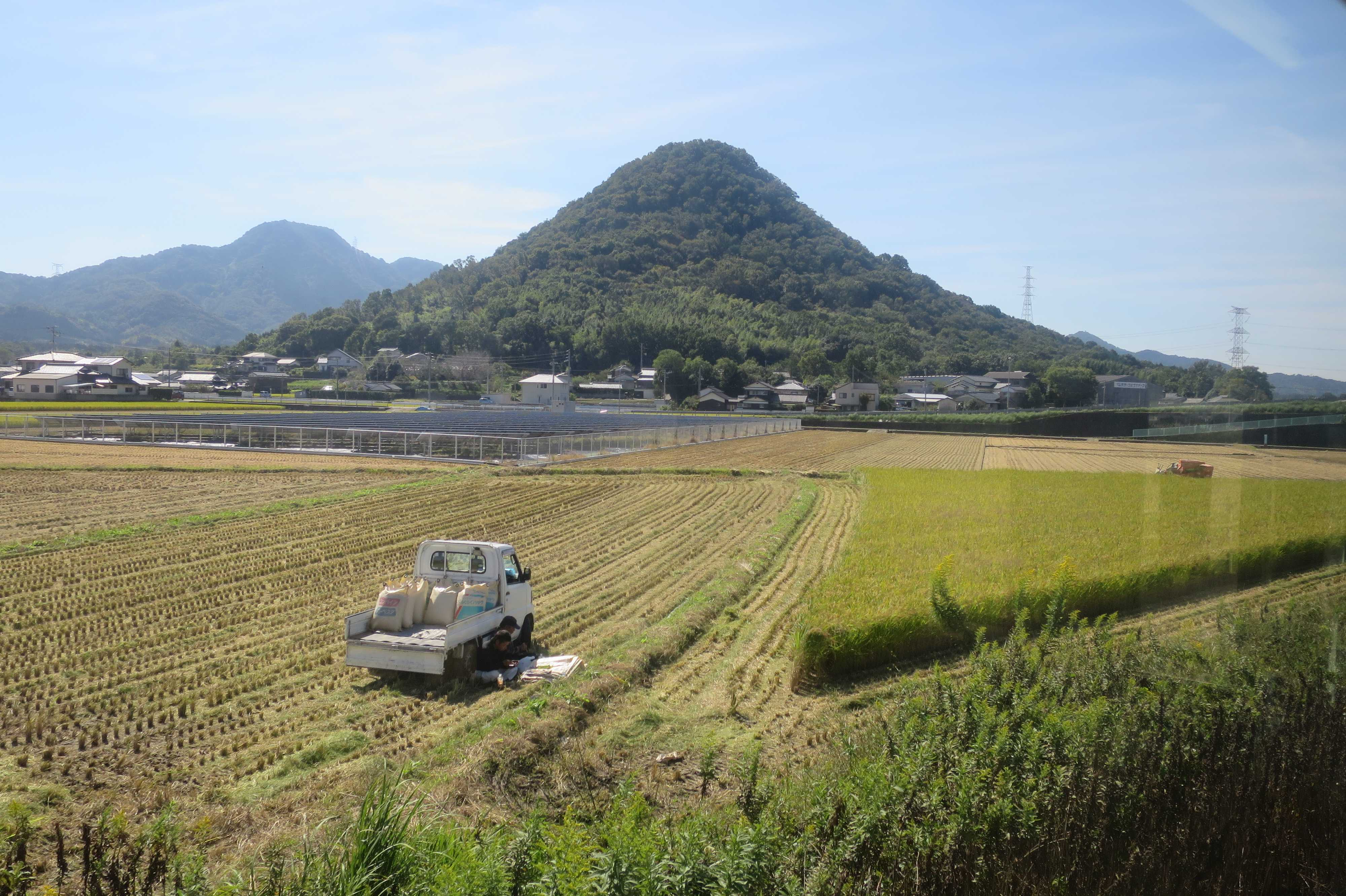 ことでん電車から見えた讃岐の稲刈り風景