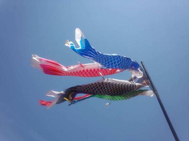 多摩センターの鯉のぼり