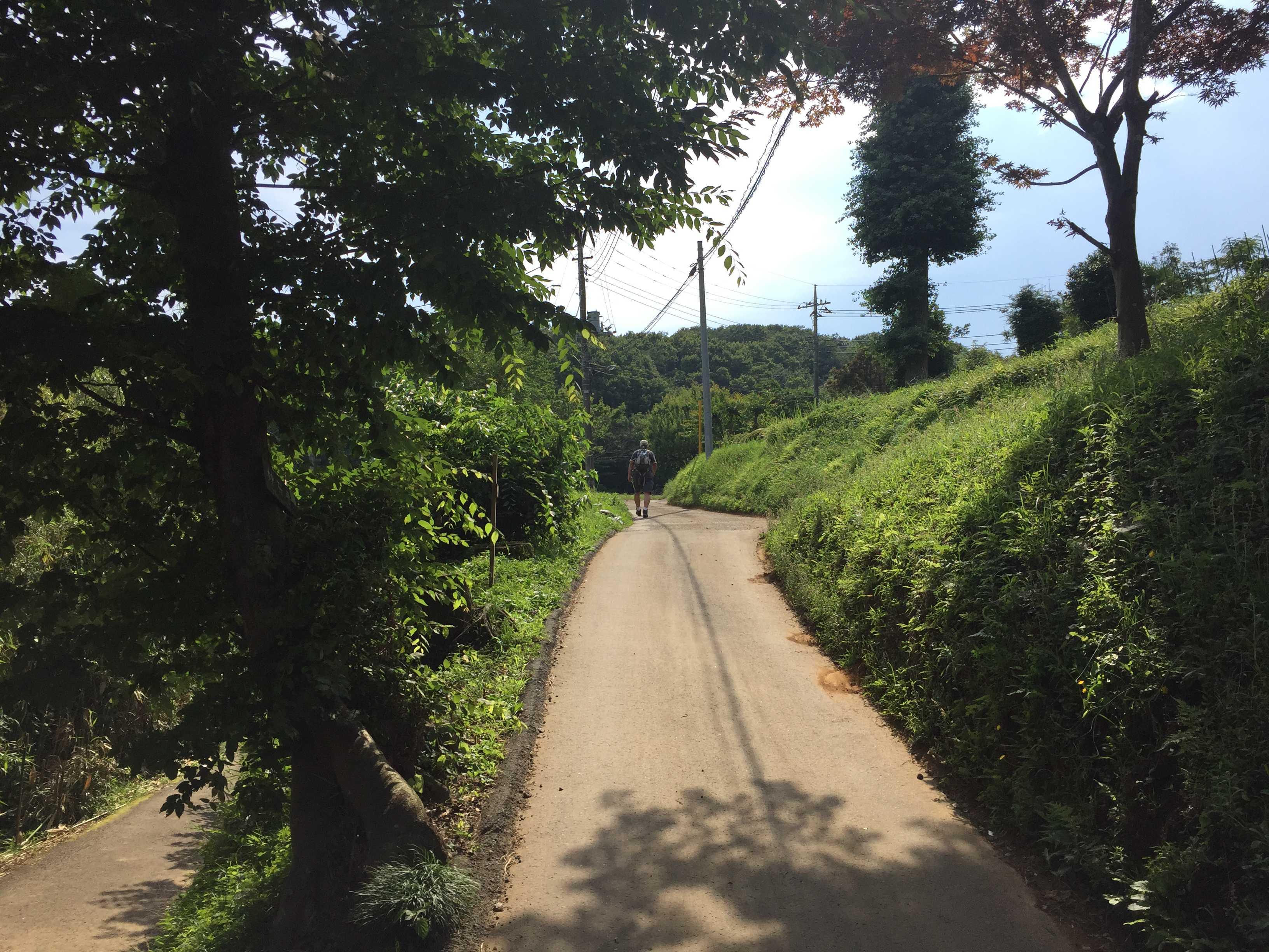 小野路の里山の道
