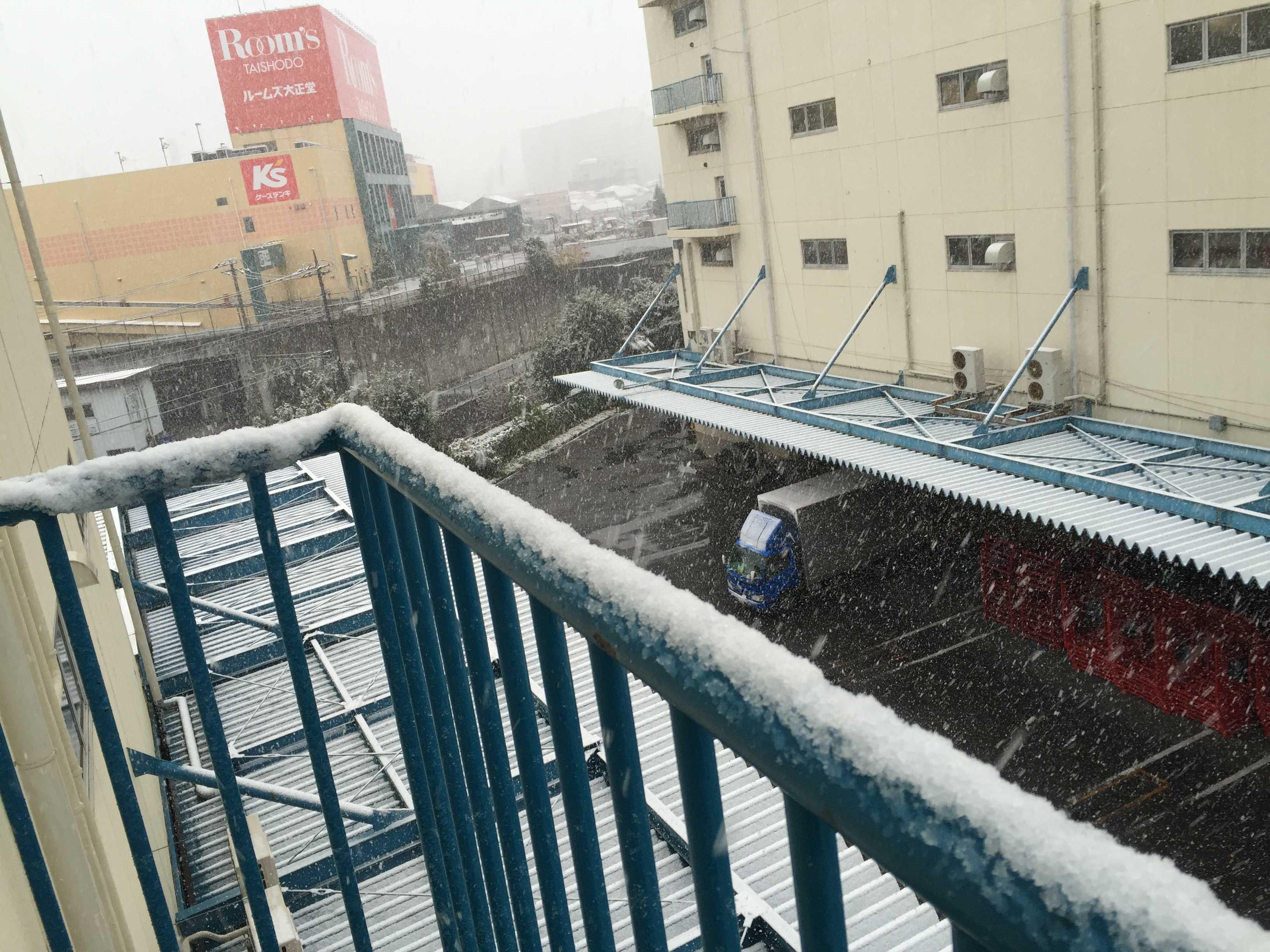 初雪(東京都八王子市)