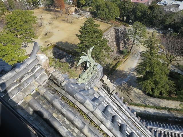 高知城のしゃちほこ