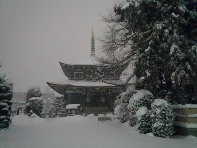大雪の日の大義寺(東京都八王子市)