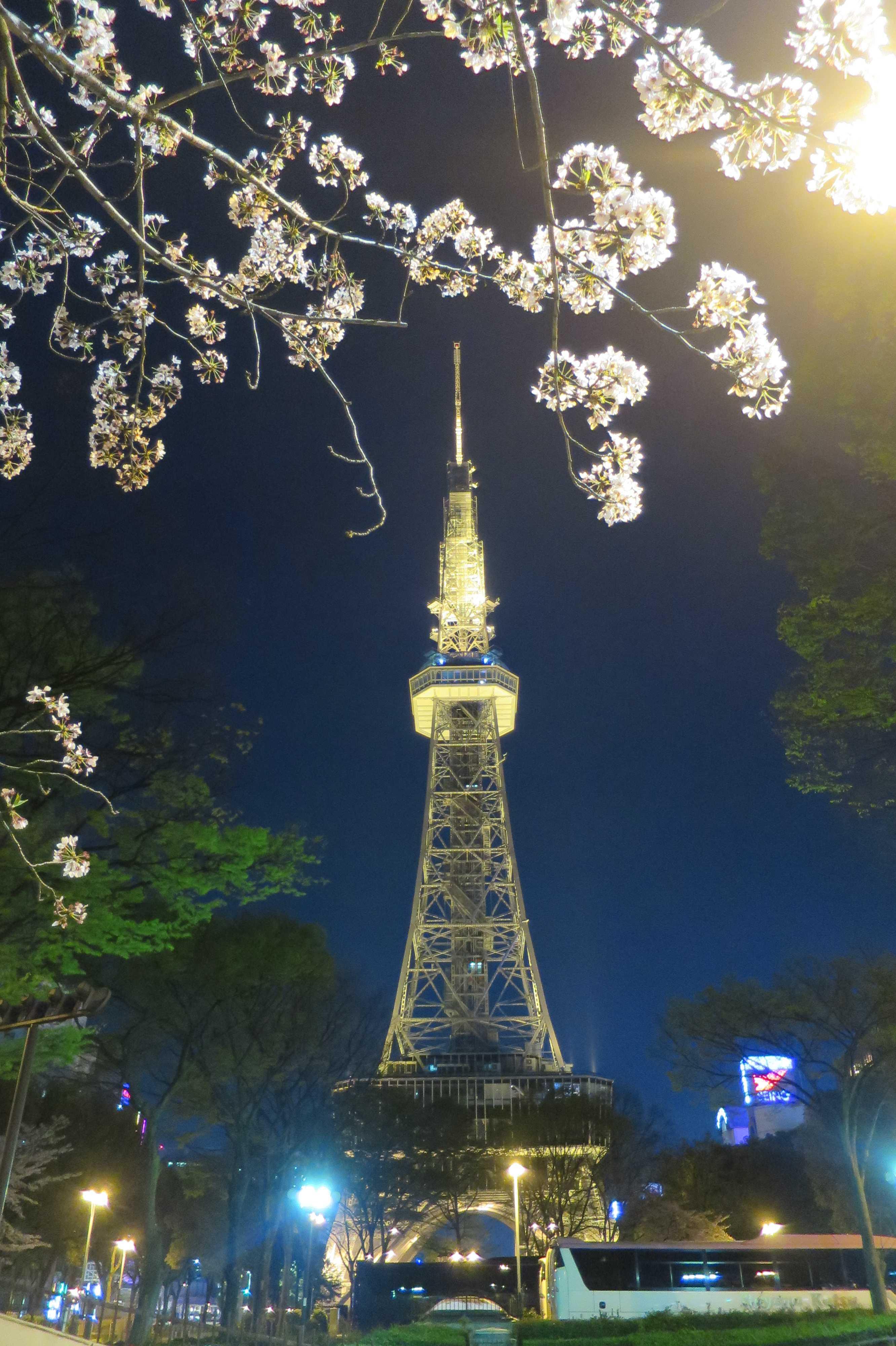 夜の名古屋タワー