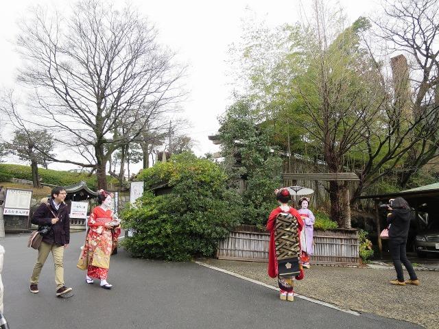京都の舞妓さんもどき