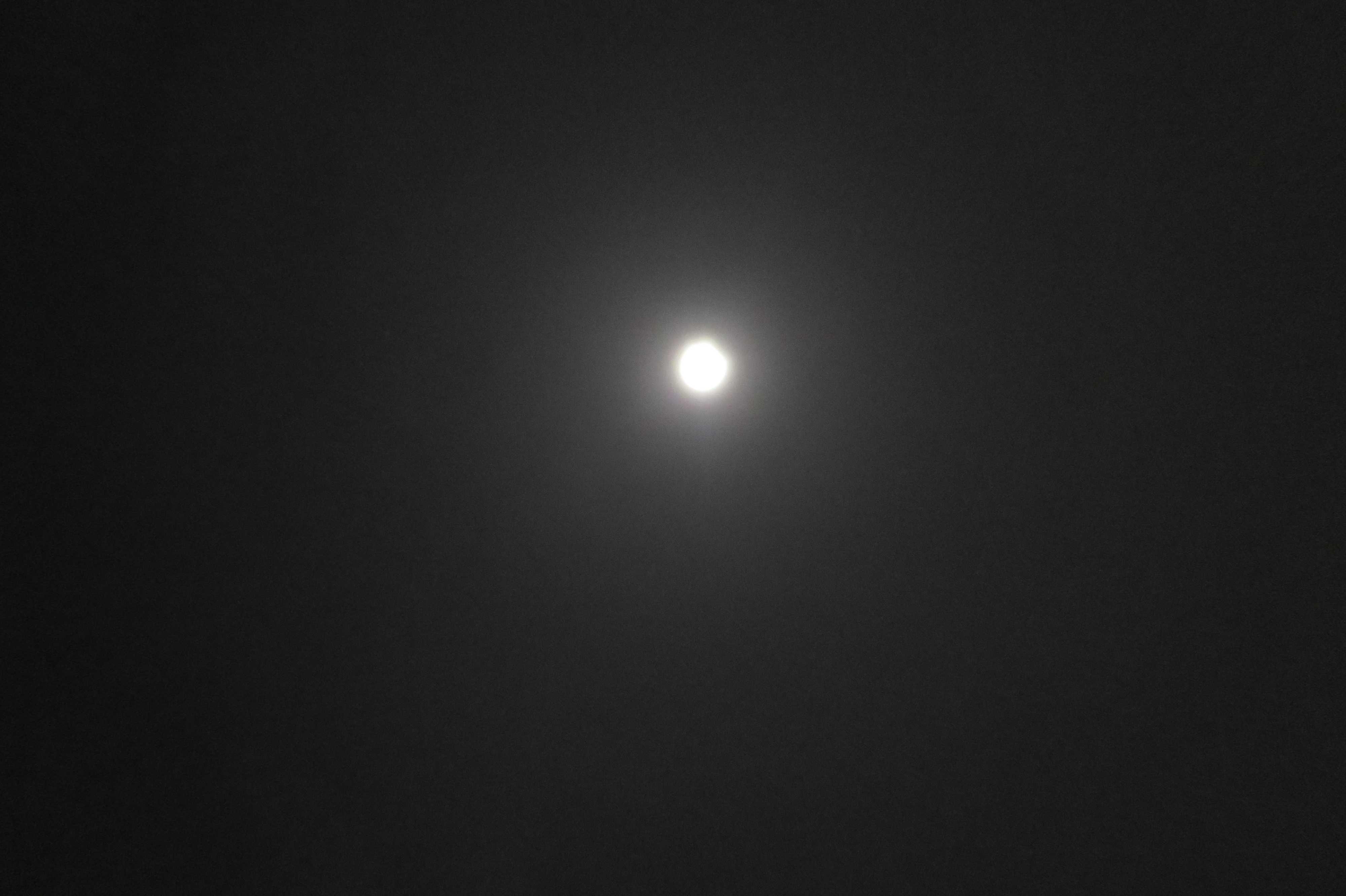 平成28年(2016年)の西大寺会陽を見つめたお月様