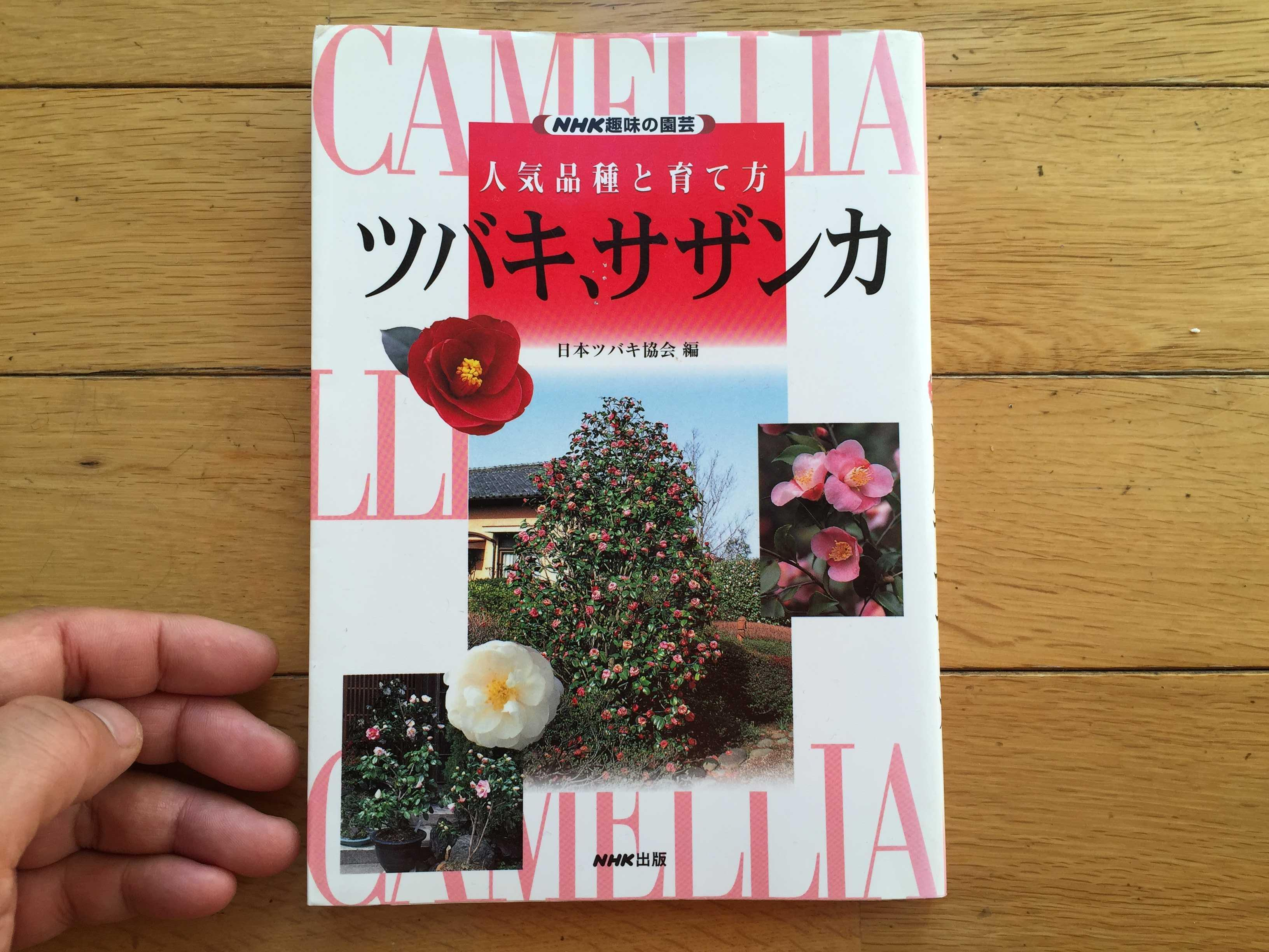 NHK趣味の園芸 人気品種と育て方 ツバキ、サザンカ - 日本ツバキ協会 編 NHK出版