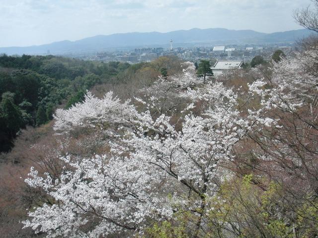 清水寺から望んだ京都タワーや東本願寺など京都市内
