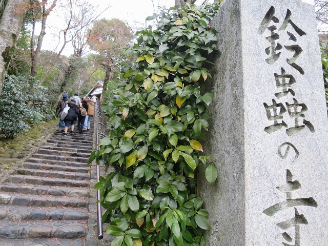 鈴虫の寺 - 鈴虫寺(華厳寺)