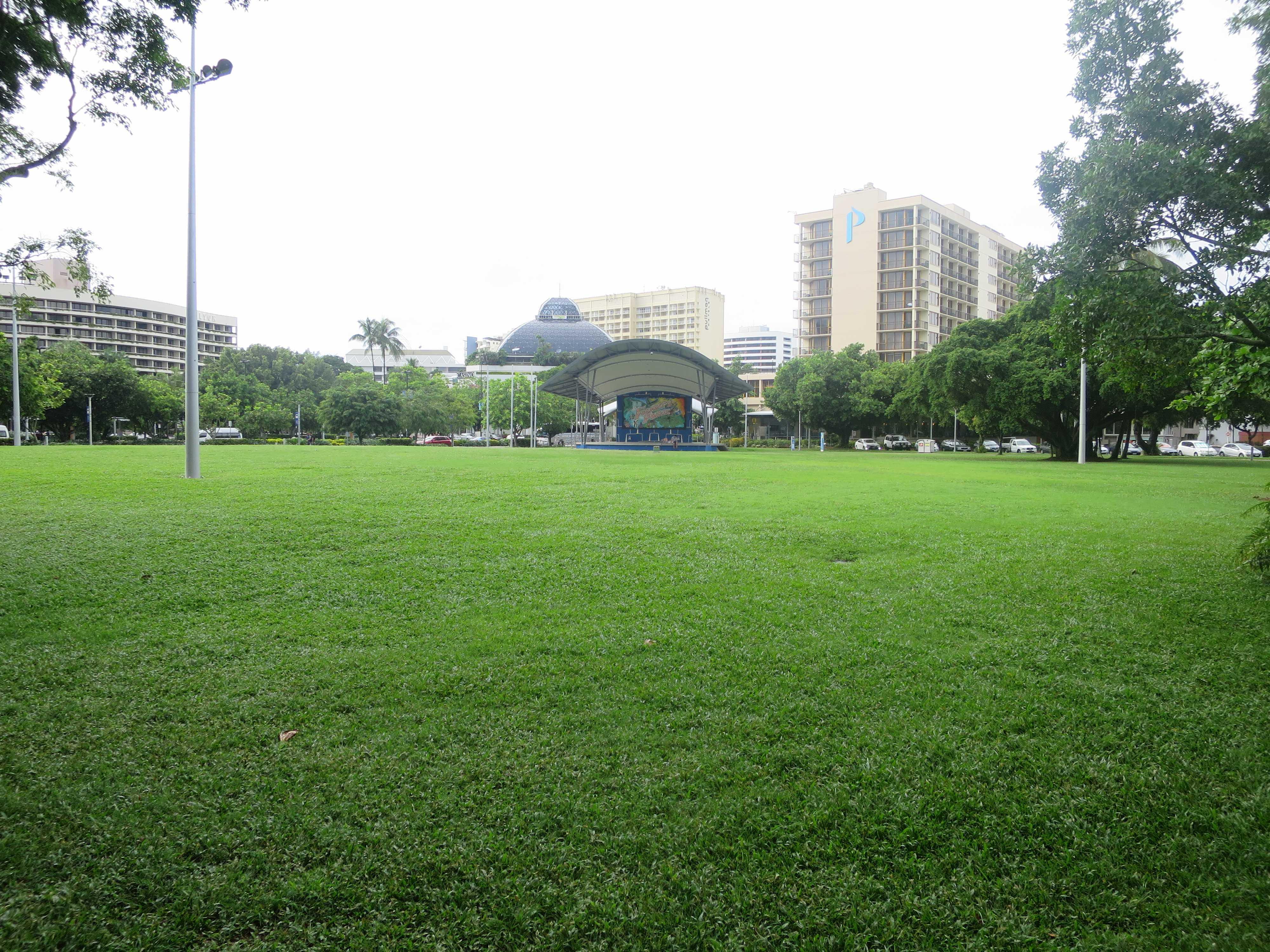 イベントが行われる芝生