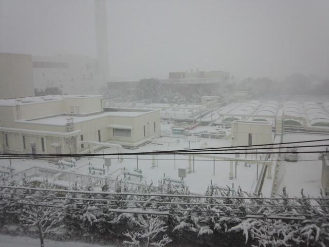 大雪: 東京都八王子市北野町