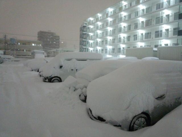大雪と駐車場