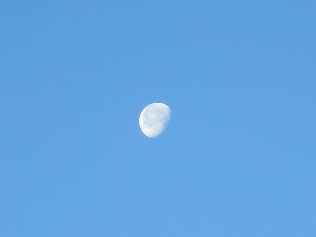 羽田空港の白い月