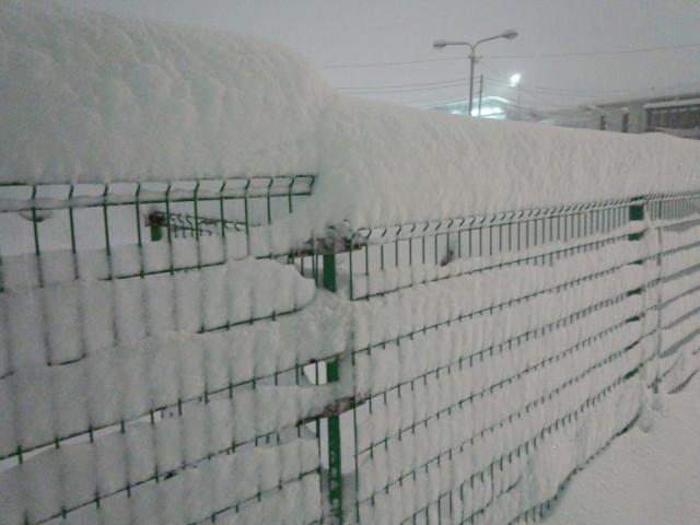 大雪とフェンス