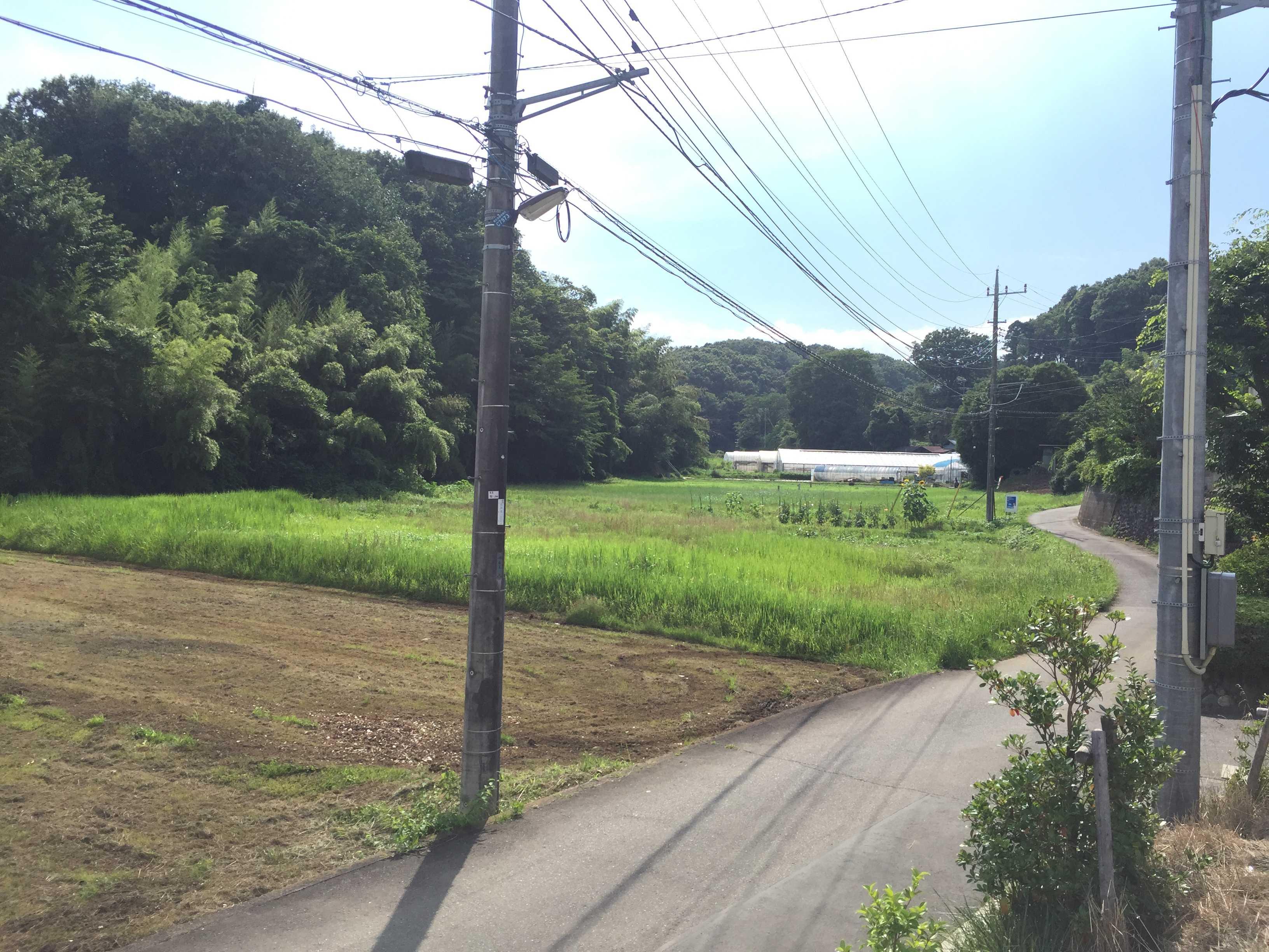 町田市小野路の道