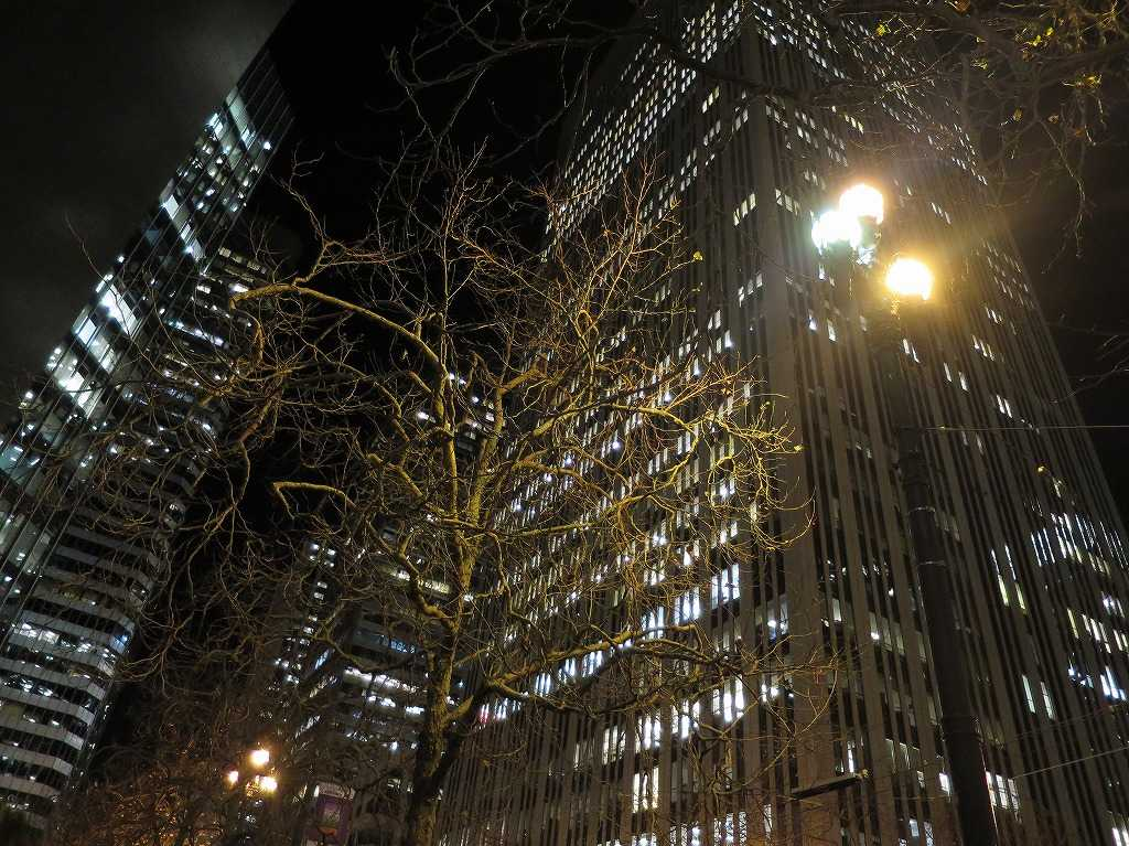 夜のサンフランシスコのビル