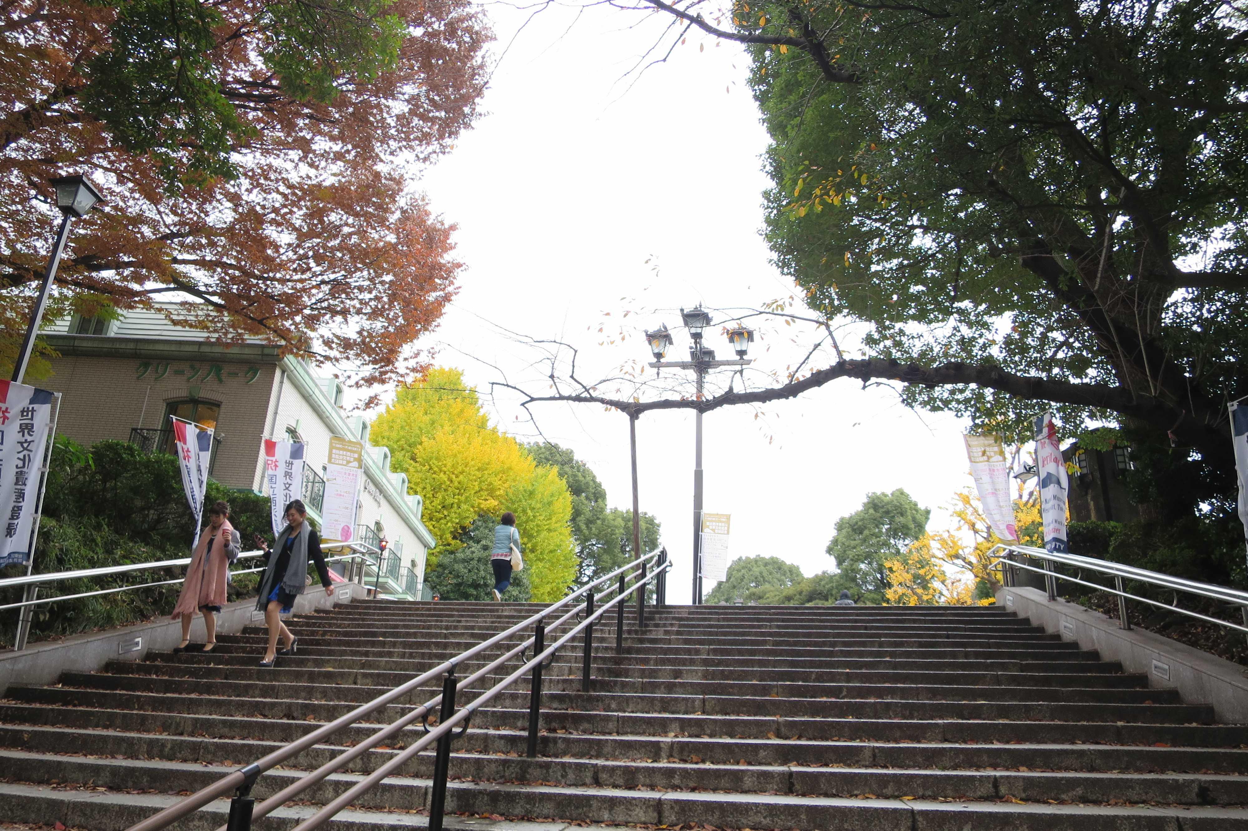 上野公園の真っ黄色のいちょう