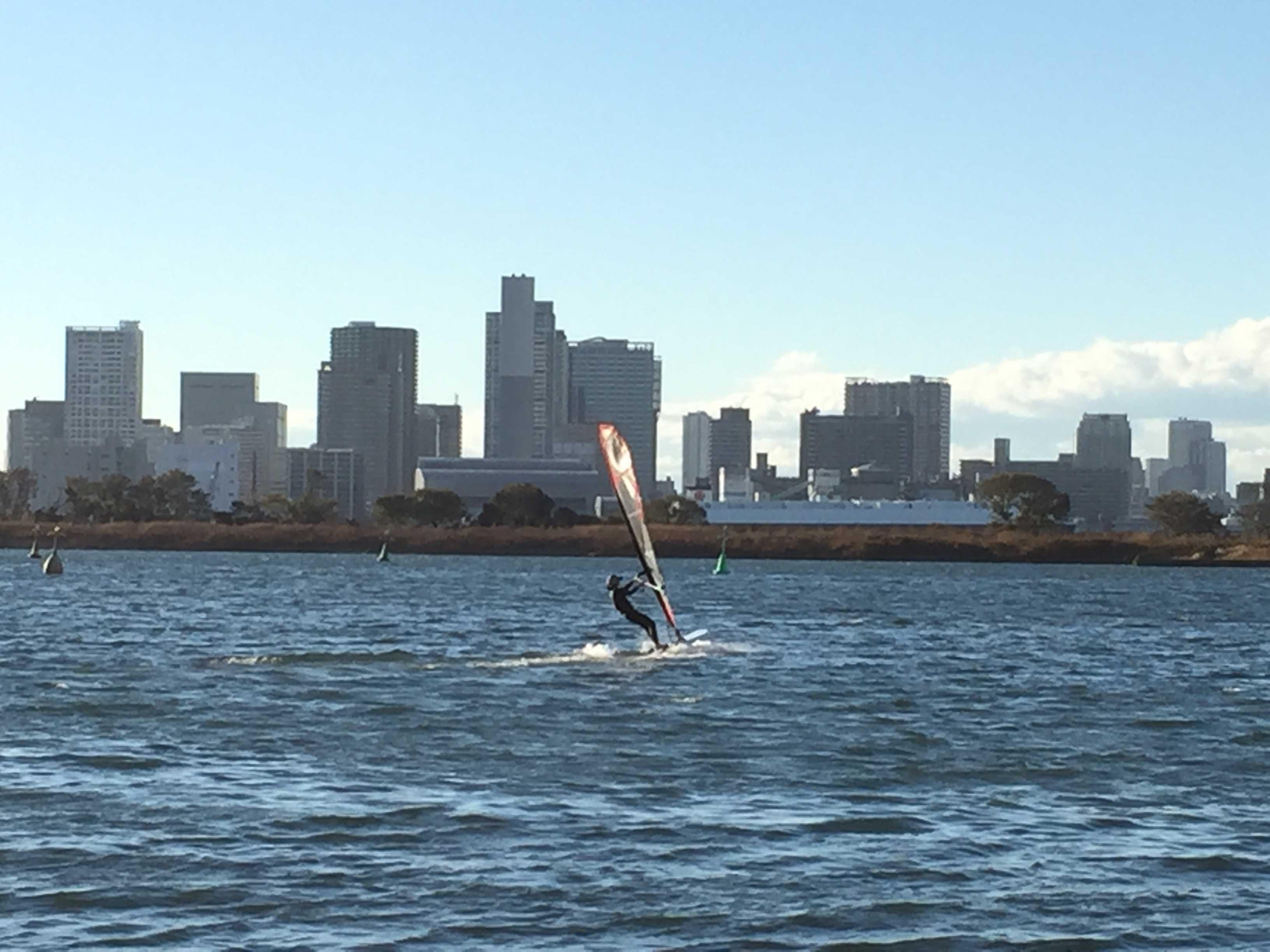 ウインドサーフィン - お台場海浜公園