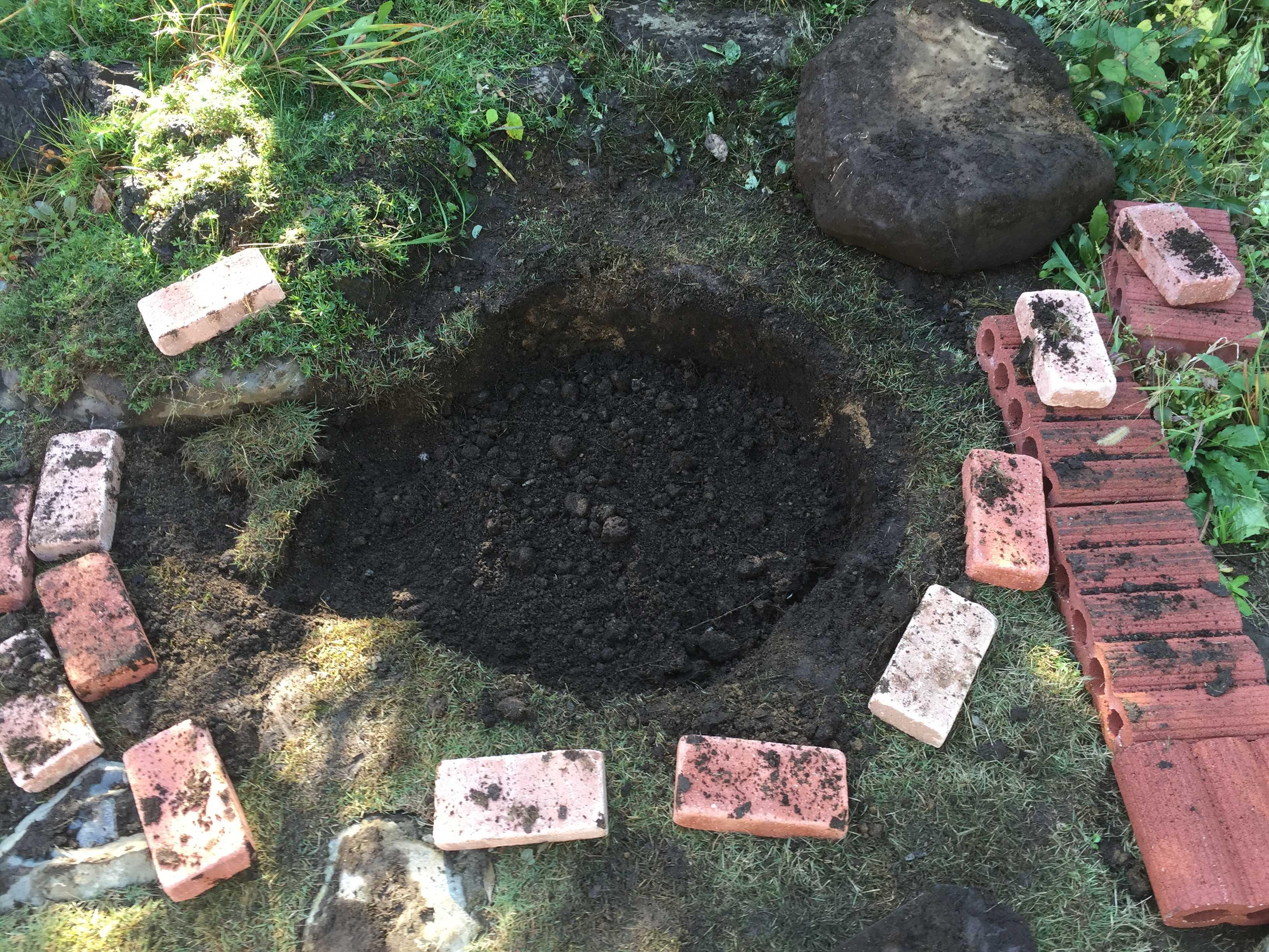 植え付け場所 - 水仙の球根の植え方
