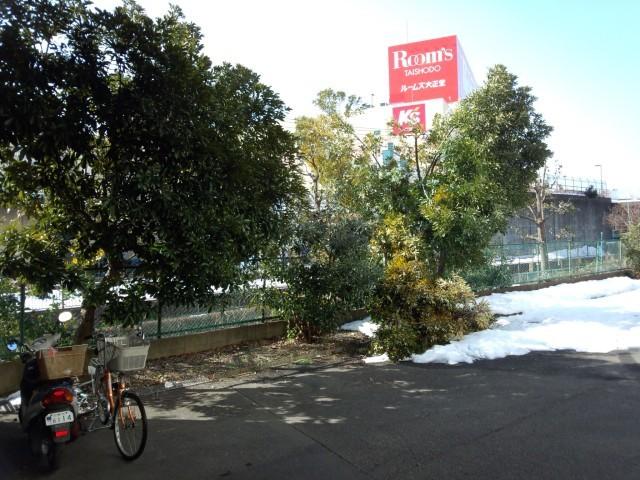 大雪で折れた木