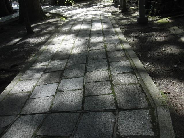 高野山 奥の院 木漏れ日の参道