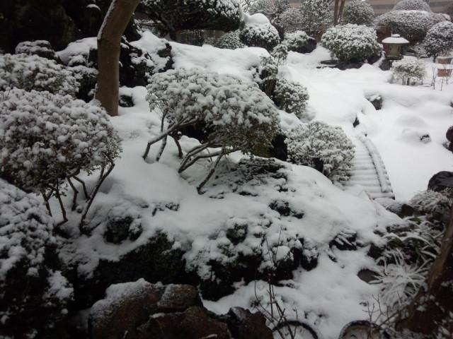 雪の日の庭