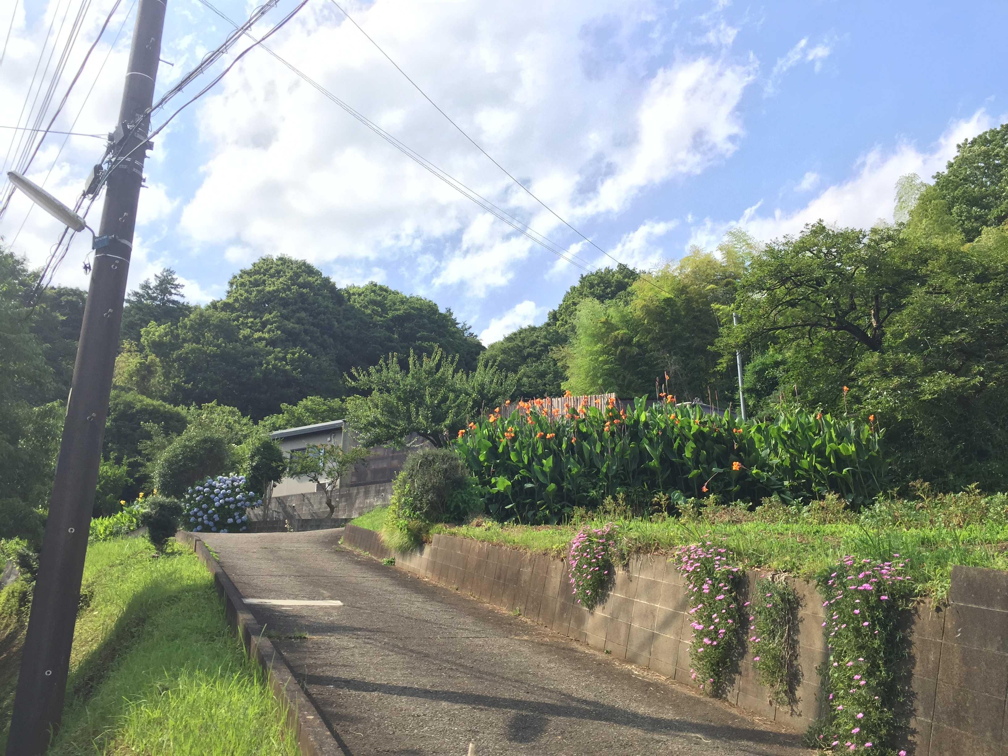 多摩の里山・緑地の原風景