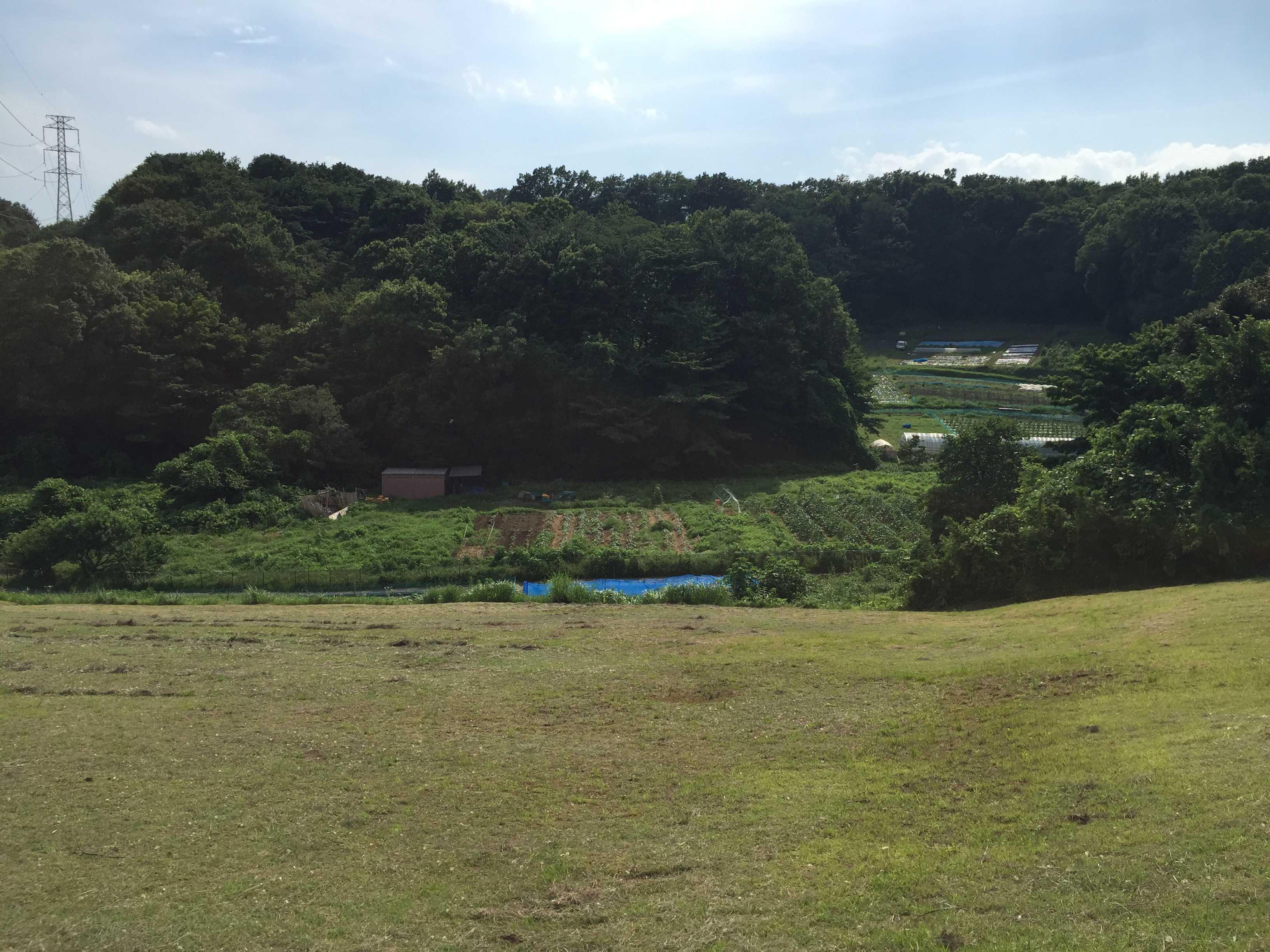 谷状の地形(谷戸/やと) - 町田市小野路町