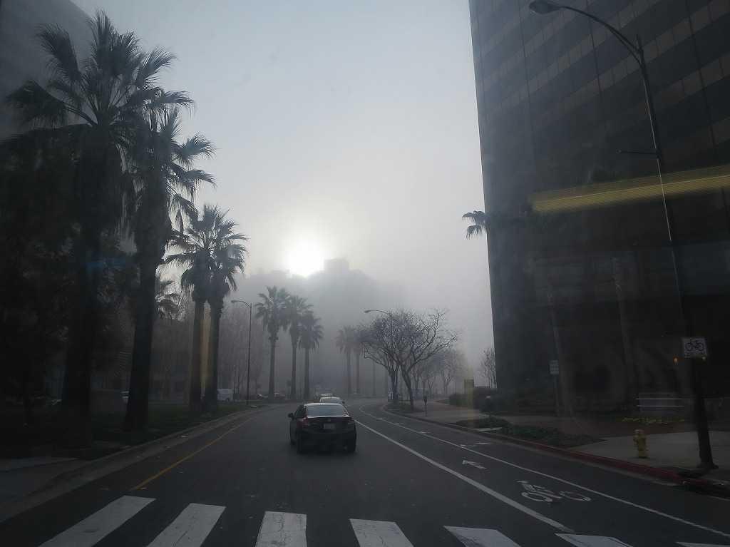 サンノゼ市内の霧