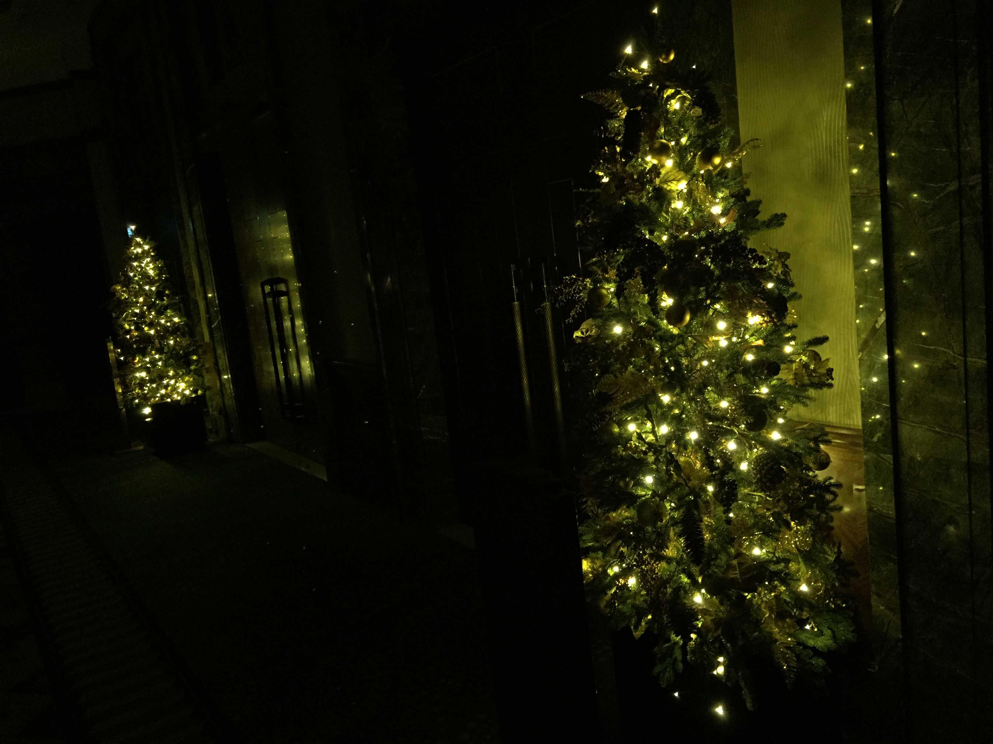 東京ベイコート倶楽部のクリスマスツリー