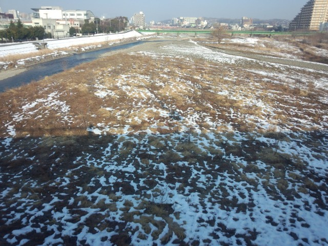 雪解けの浅川河川敷(新浅川橋から望む)
