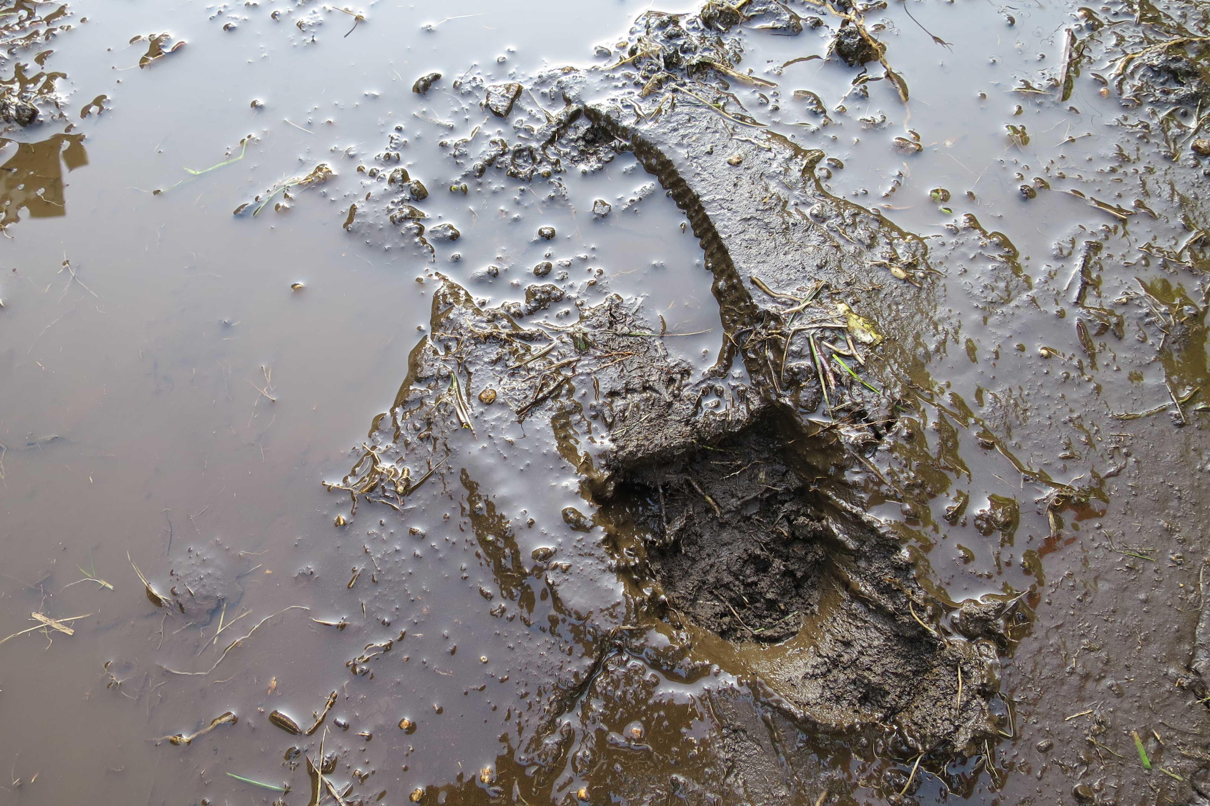 泥についた足跡