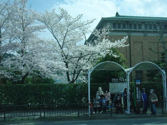 京都のバス停