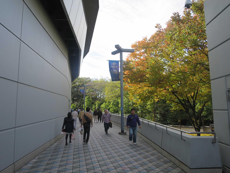 紅葉する東京ドーム