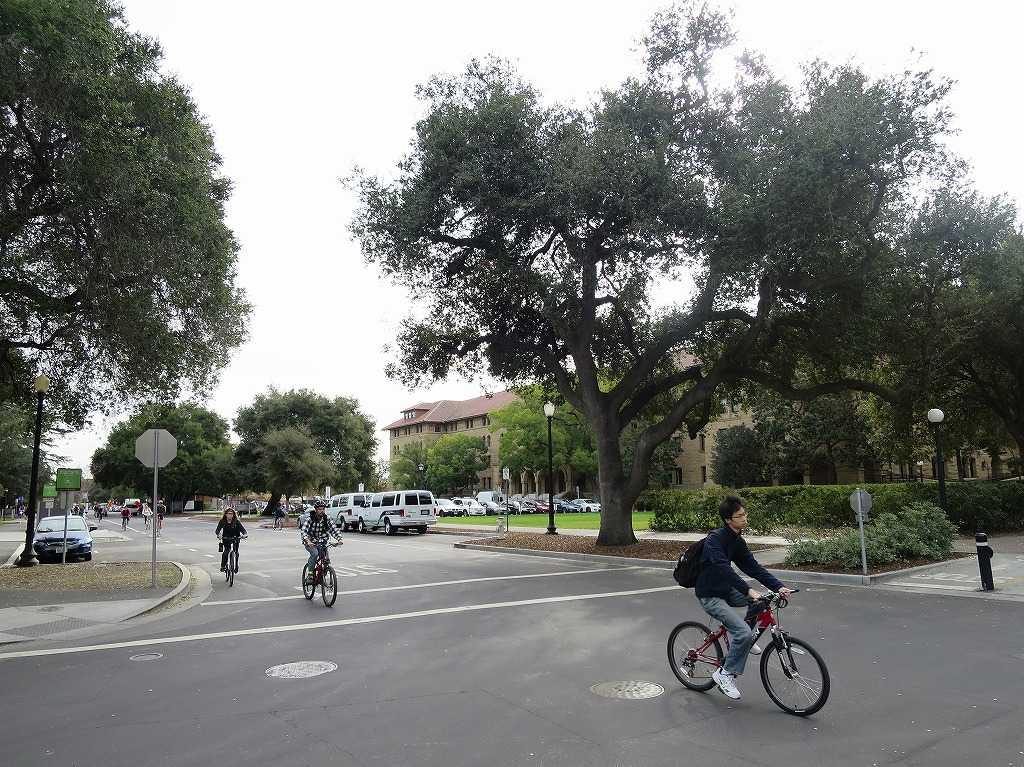 自転車で移動するスタンフォード大学の学生さん