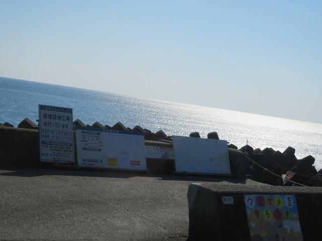 土佐(高知)の輝く海