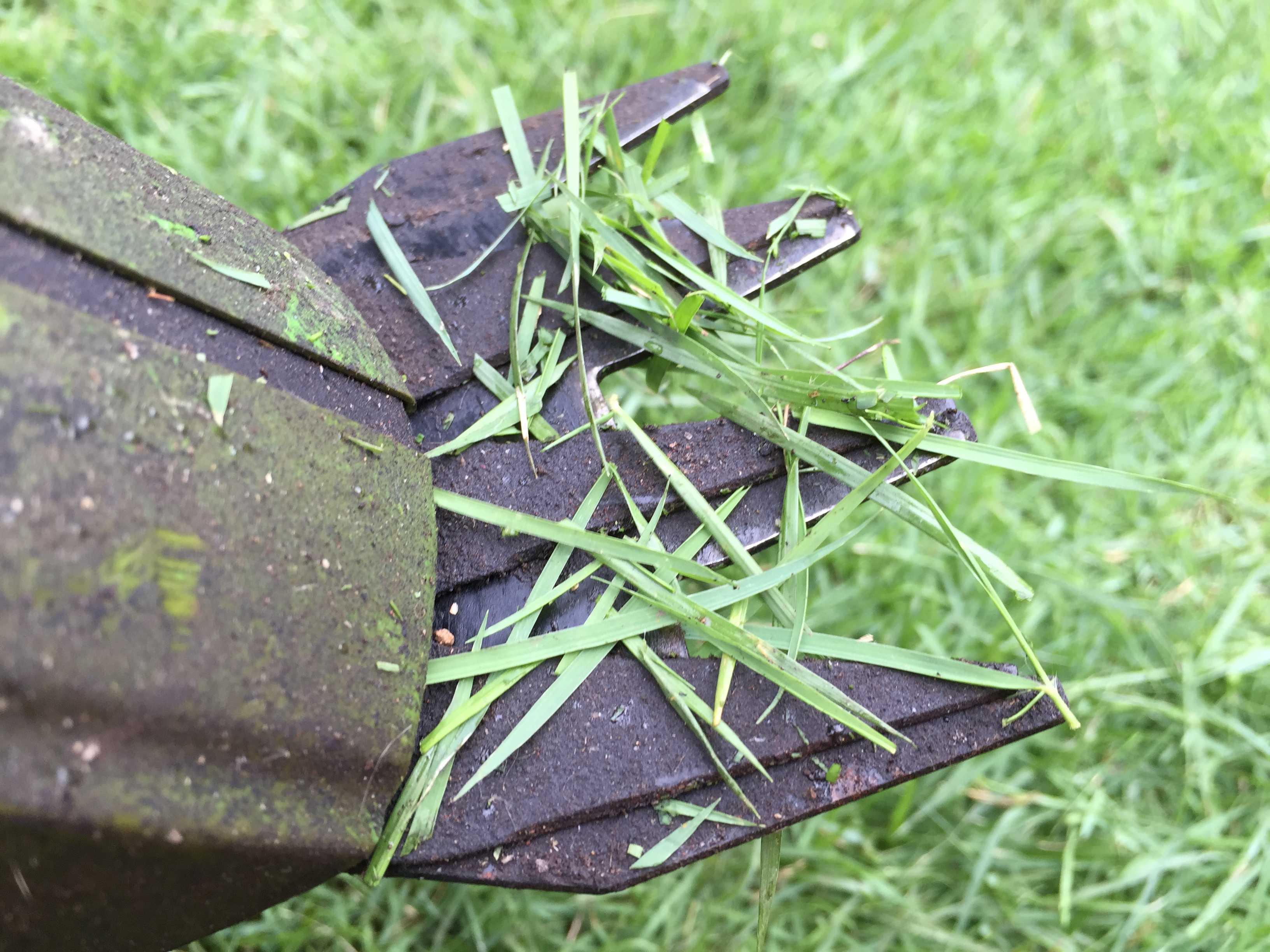TM9 - 芝刈り