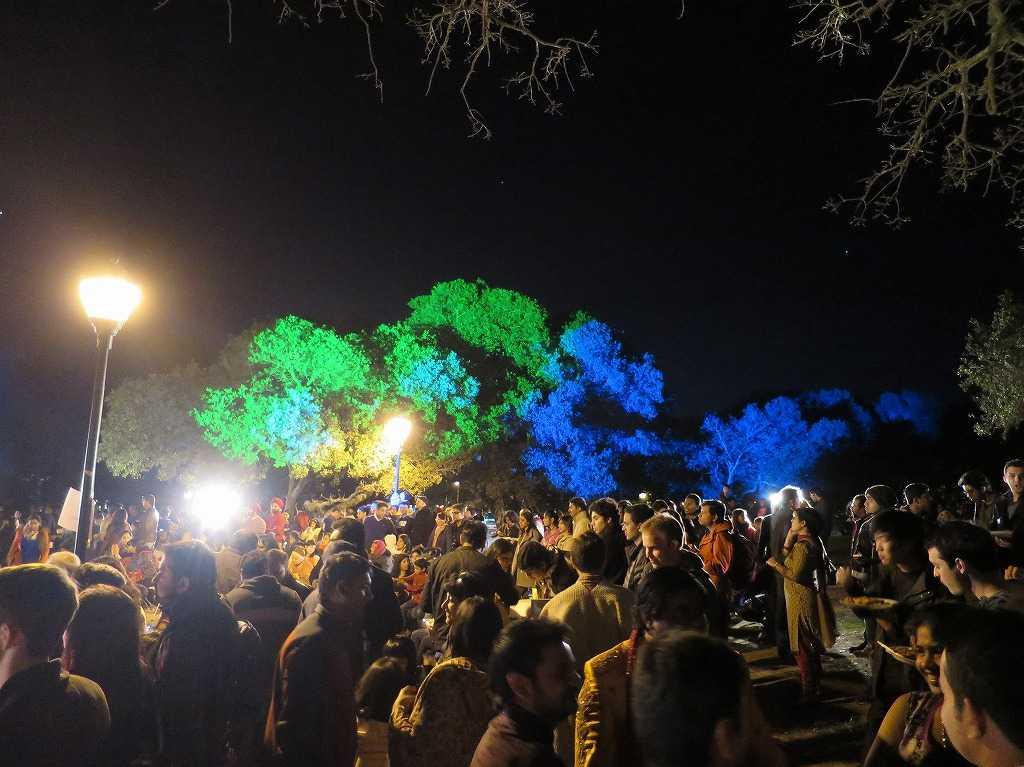 スタンフォード大 - ライトアップされた木々