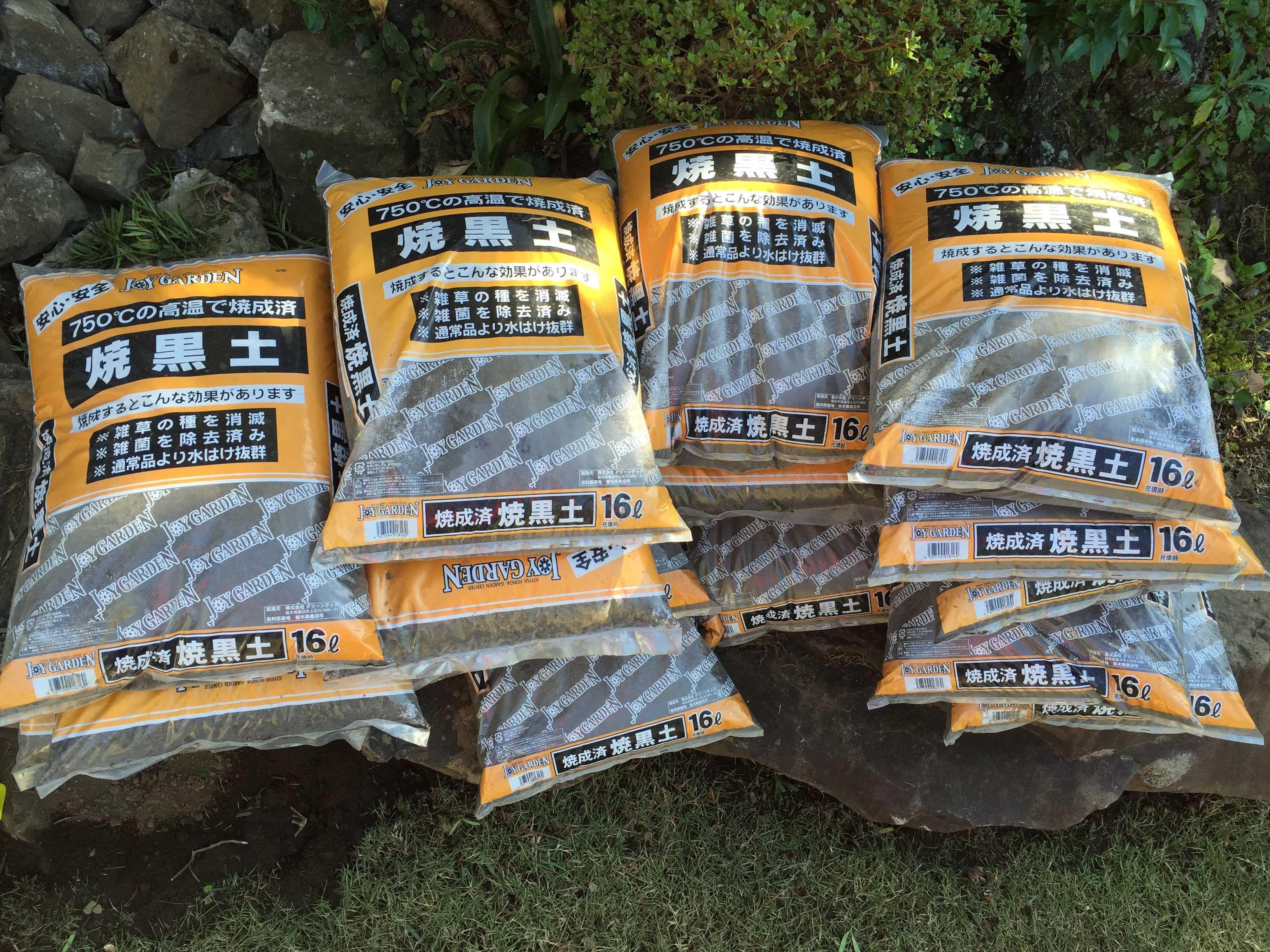やまゆりの球根植え付け - 焼成済み焼黒土