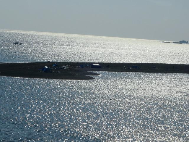 まぶしい土佐(高知)の海