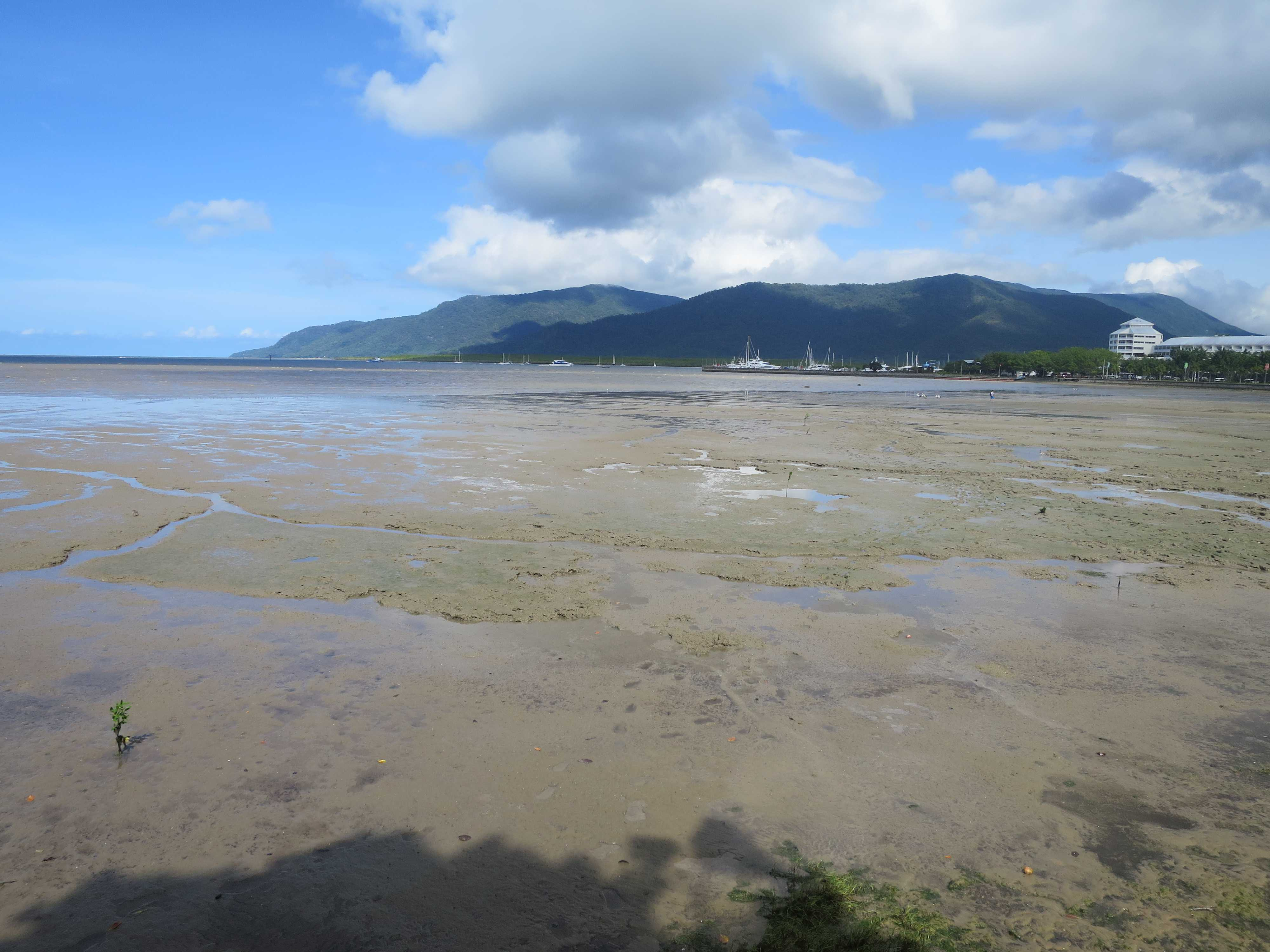ケアンズの海 - 干潮(引き潮)で泥海になりました