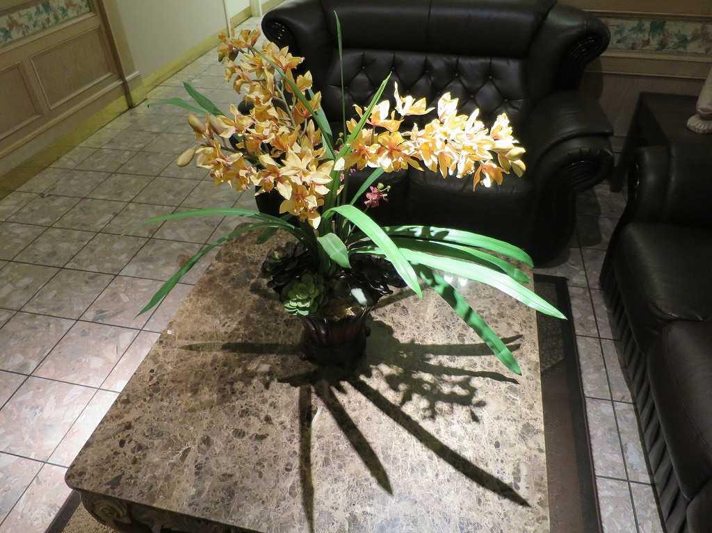 サンノゼ: アレーナホテルのロビーのお花
