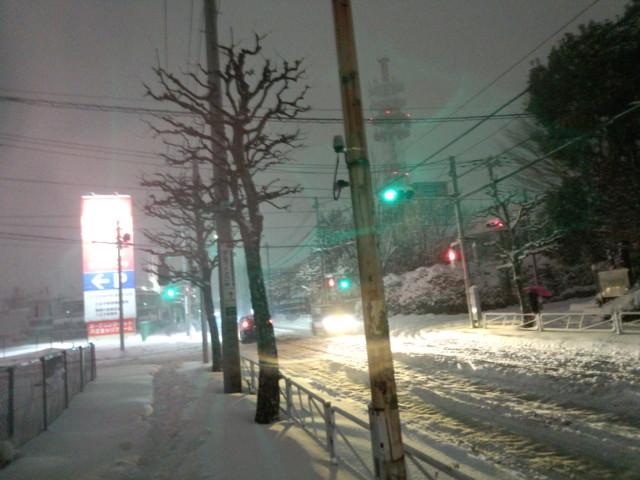 2014年/平成26年2月8日、大雪の記録写真(東京・八王子)