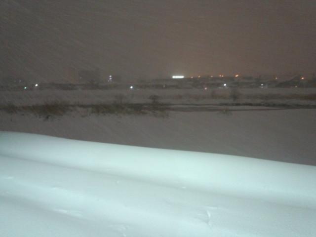 大雪の浅川堤防(東京都八王子市)