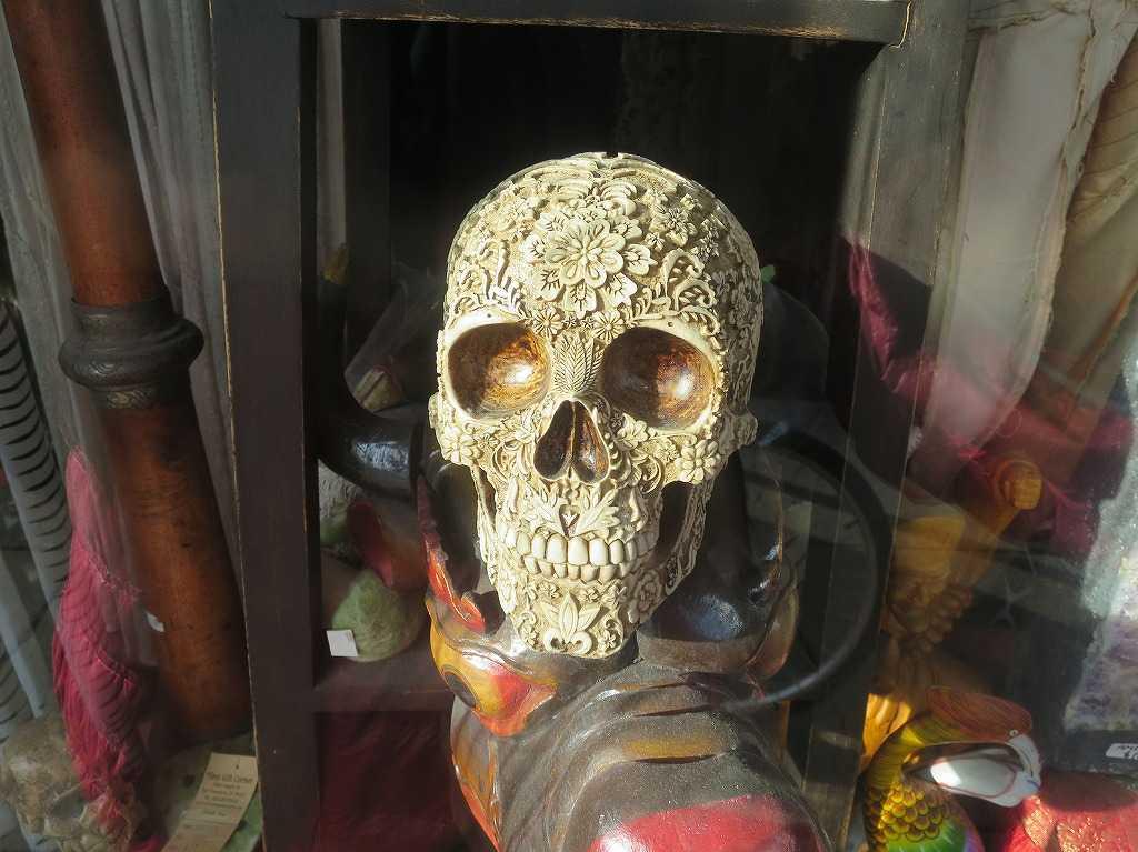 ヘイトアシュベリー - スカル(頭蓋骨)