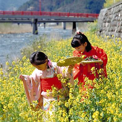 「流しびな」 鳥取県鳥取市用瀬町