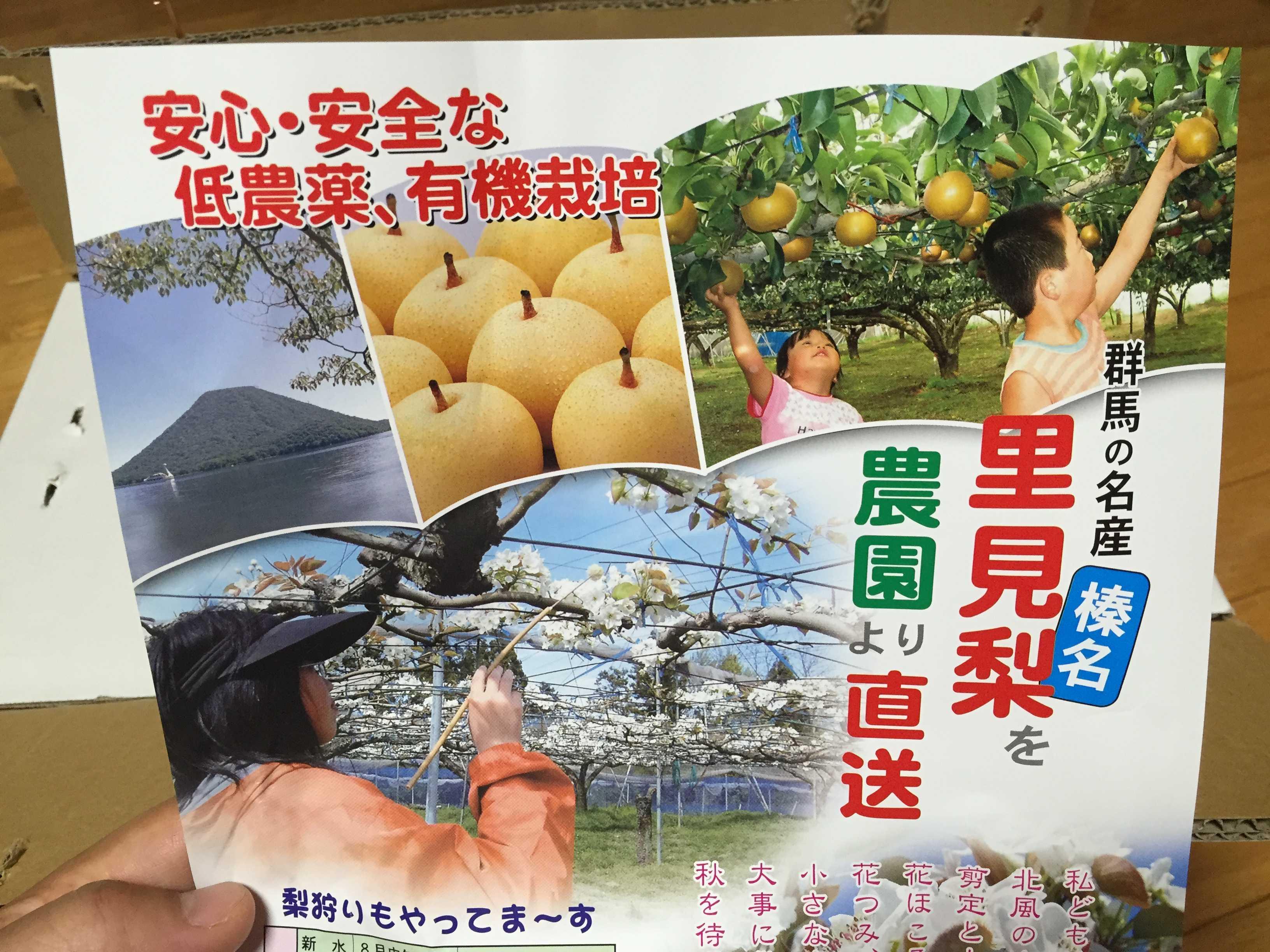 群馬の名産 榛名里見梨を農園より直送 安心・安全な低農薬、有機栽培