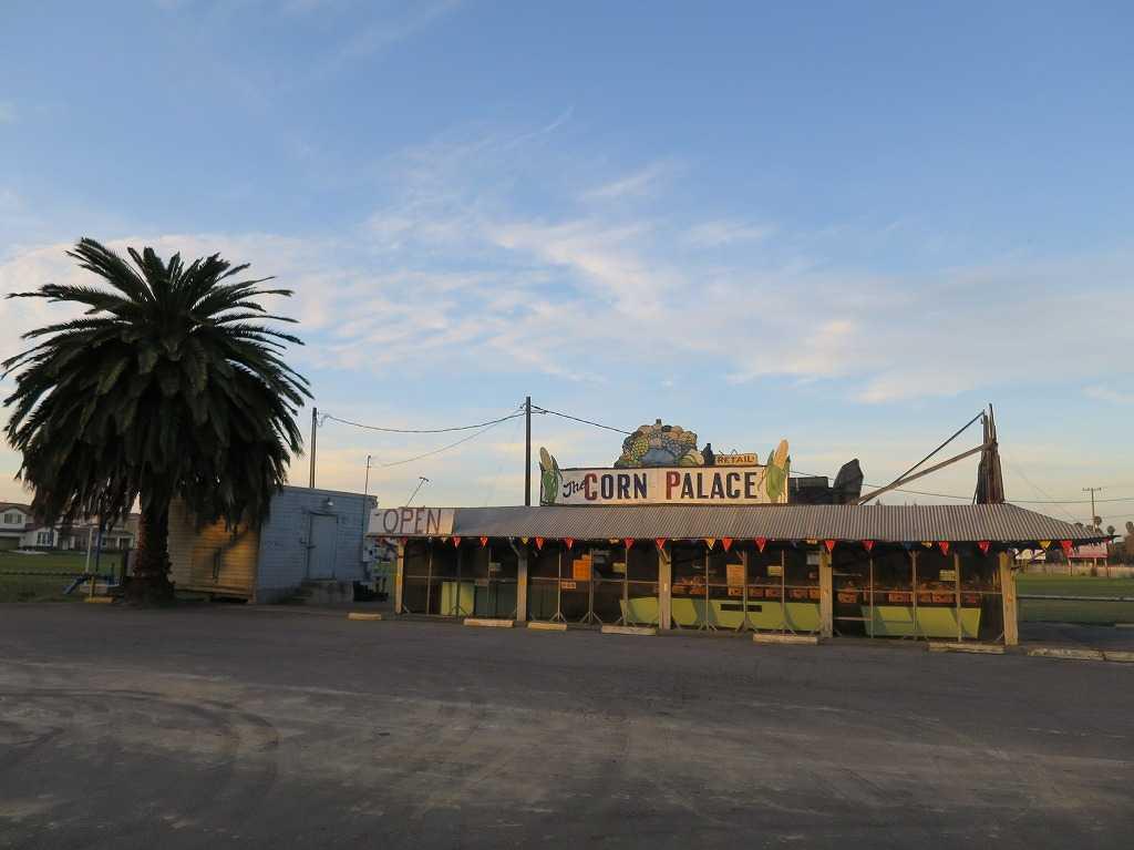 ローレンス - CORN PALACE(とうもろこし販売所)